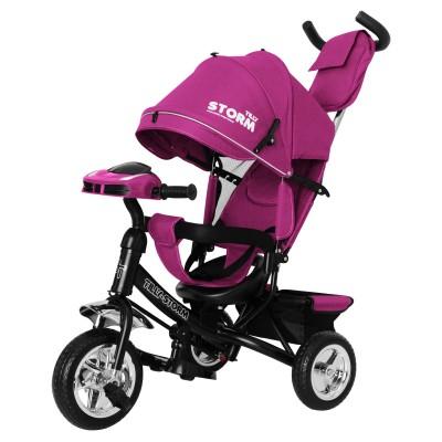 Детский трехколесный велосипед TILLY STORM T-349/2 Фиолетовый