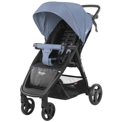 Детская коляска прогулочная CARRELLO Maestro CRL-1414  + дождевик